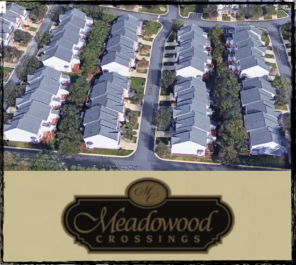 Meadowood Crossings Treatment Case